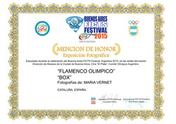 FICTS Buenos Aires 2015