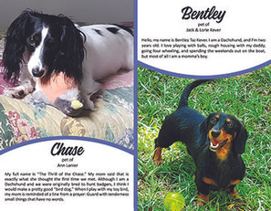 8. August - Chase & Bentley.jpg