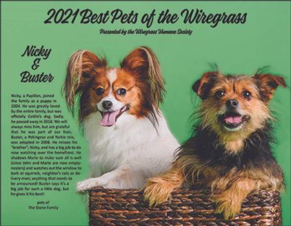 Website contest photo.jpg