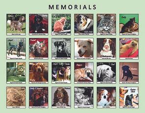 Memorial Page.jpg