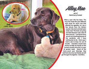 12. December - Alley Mae.jpg