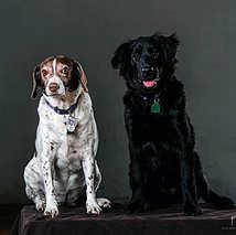 45. Maggie & Hester
