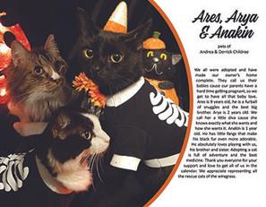 10. October - Ares, Arya & Anakin.jpg
