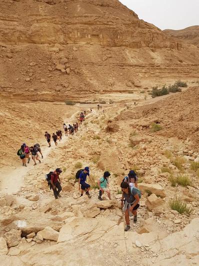 The Negev Adventure