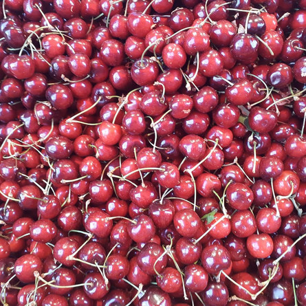 The freshest cherries you've ever had!