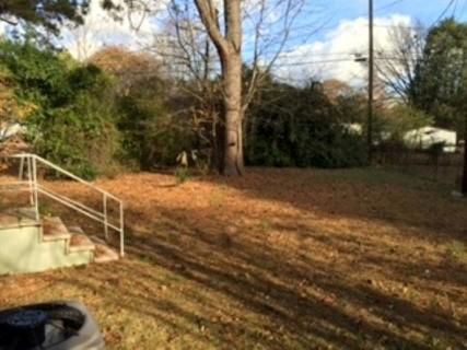 237 Carol Backyard