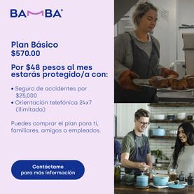 PlanBasico.jpg