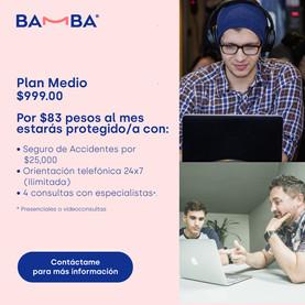 PlanMedio.jpg