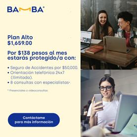 PlanAlto.jpg
