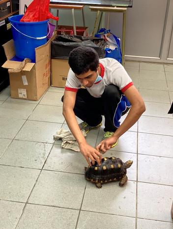 領養被遺棄動物,學生透過照顧動物,學會尊重生命及愛惜大自然