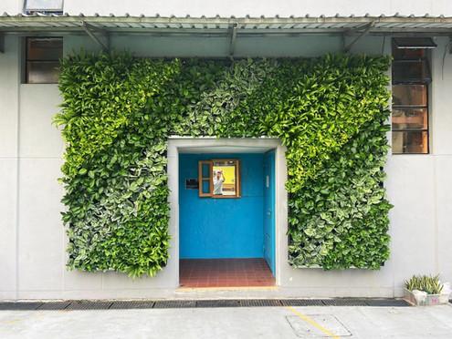 學生共同設計環保綠牆,把綠化氛圍推廣至全校,培養學生環保意識
