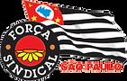 Força_Sindical_SP_-_Logo.png