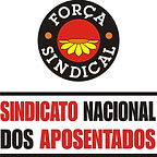 SINDNAPI - Logo.jpg
