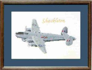 Shackleton Cross Stitch Kit