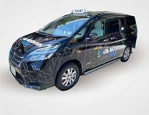 taxi-image-FIX.jpg