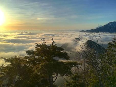 素晴らしい雲海の朝