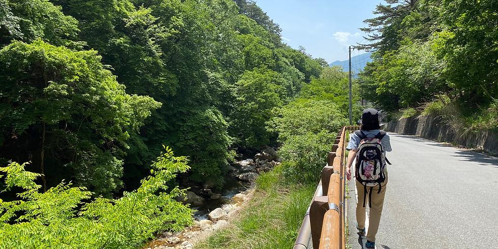 【午前】増富・本谷川渓谷の清流をたどる半日ウォーク