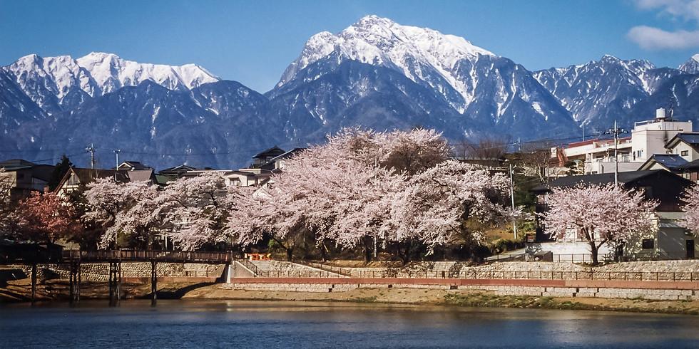 【開催中止】ショート午前 北杜 長坂でお花の名所めぐり