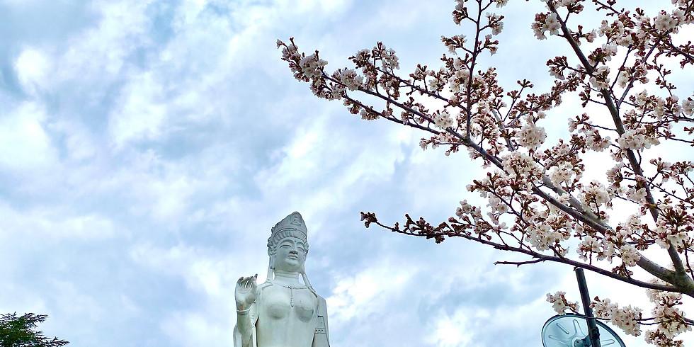 【午前】韮崎まちなか見学と七里岩散策ウォーキング!