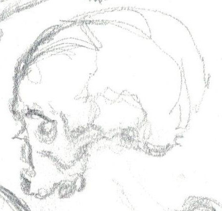 Field studies in anatomy
