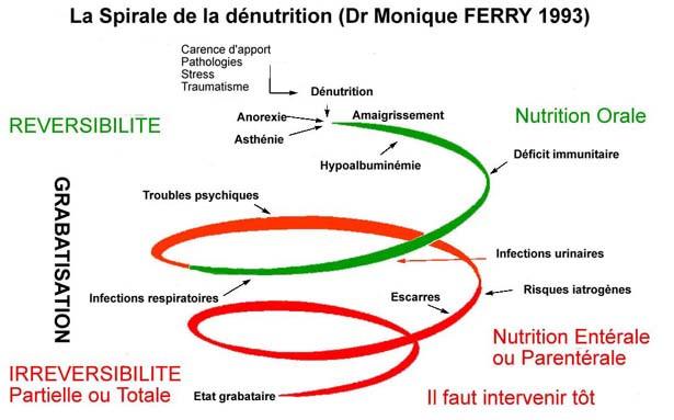 spirale dénutrition Lois Clement Tacher dieteticienne nutritionniste a biarritz anglet bayonne en cabinet a domicile et a distance