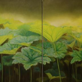 Darmera peltata 2017 Öl auf Leinwand 80 x 200 cm