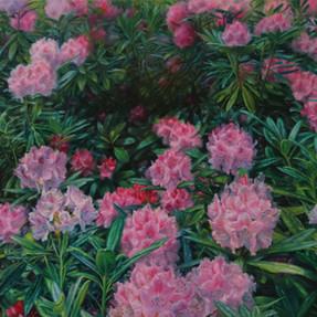 Blütendämmerung 2017 Öl auf Leinwand 60 x 80 cm
