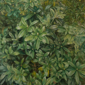 Rhododendron 2016 Öl auf Leinwand 100 x 80 cm