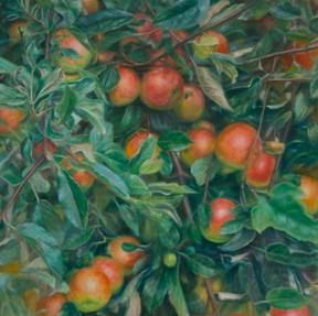 Äpfel-Anselma-Murswiek-110x90cm-2020.jpg