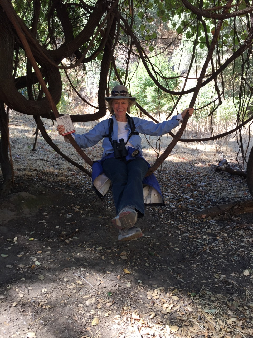 Grapevine Swing