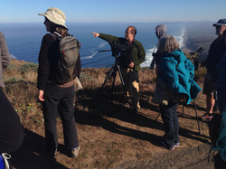 Outer Point Reyes