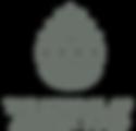 SAF Logo (new).png