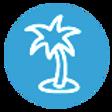 Palm%2525252525252520Tree%25252525252525