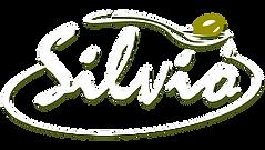 Silvio-2.png