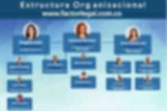 estructura%252520organizacional_edited_e