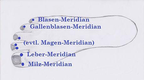 Fuss-Meridiane.jpg