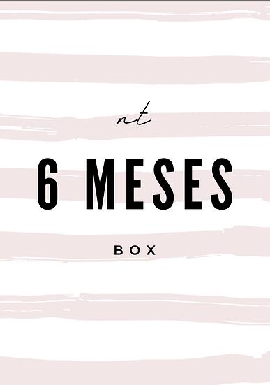 6 CAJAS / MESES