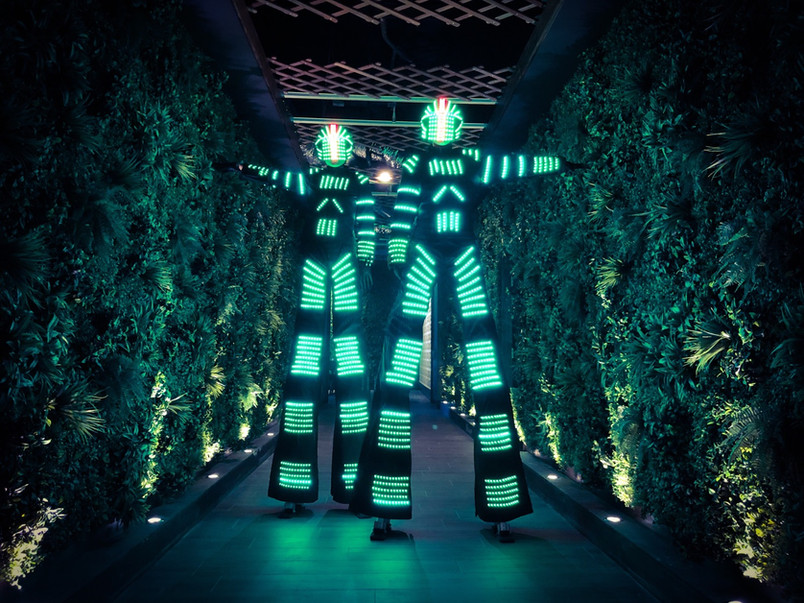 LED Robots Performers