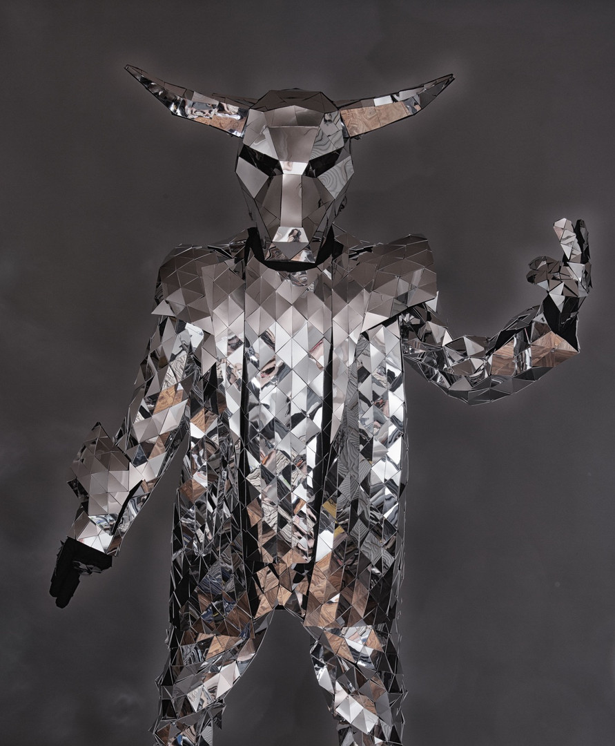Mirror Costumes with bull head