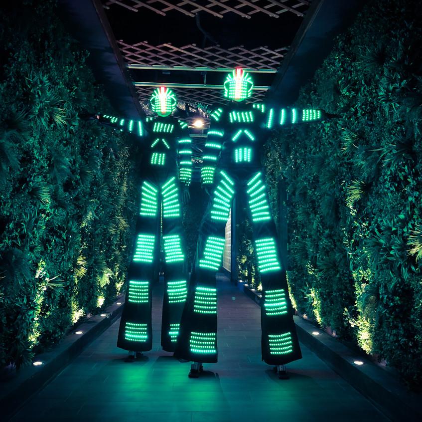 The Led Robots