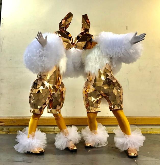 Mirror Bunny costumes