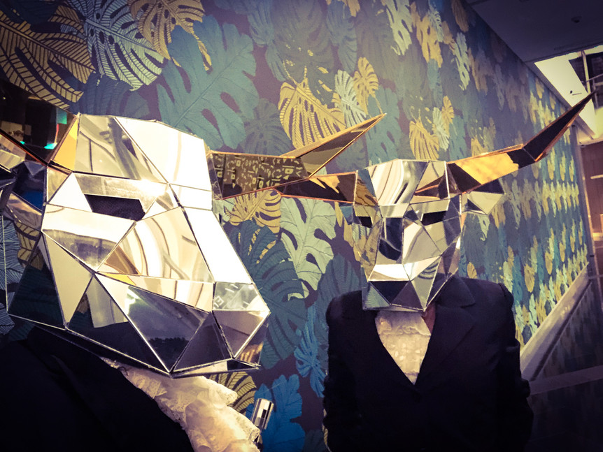Mirror Bull Heads costumes