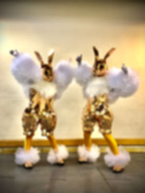 Mirror People, Mirror Bunnies. We specialise in wedding Entertainment. Sydney and Central Coast NSW
