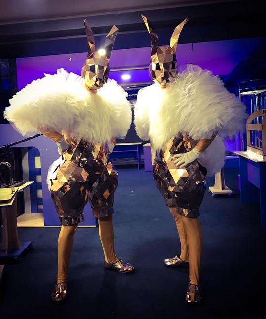 Mirror bunny