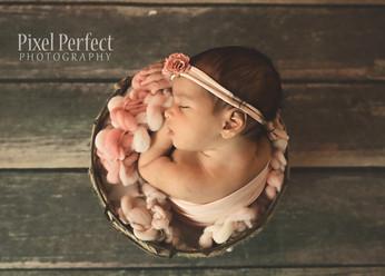 Veera Newborn-16.jpg