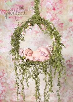 Jocee Newborn-2.jpg