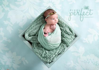 Piper Newborn-32.jpg