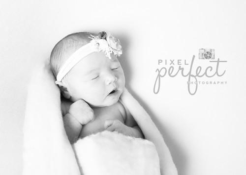Goyette Newborn-15b.jpg
