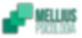 Logo Nova.png