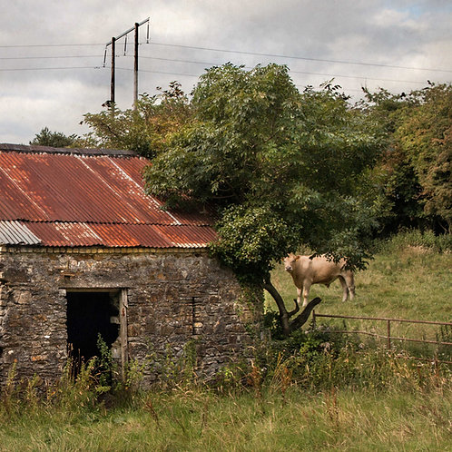 In Ireland there's always someone watching :)